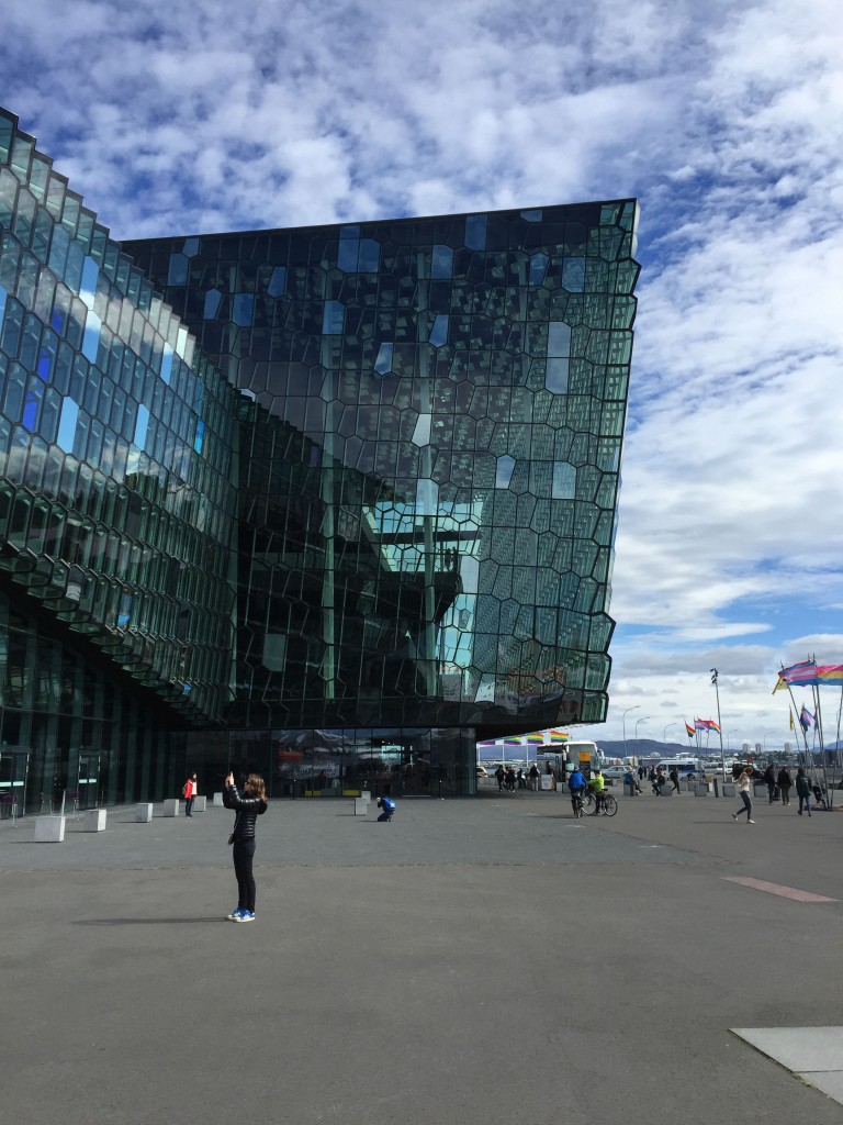 Antoine.faivre_Wordpresse_reykjavik2015_HARPA-14